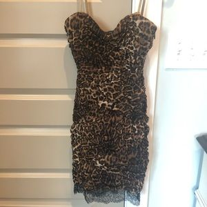 BCBG leopard and black lace cocktail dress!